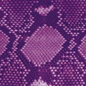 kings_and_queens_python_purpleglanz